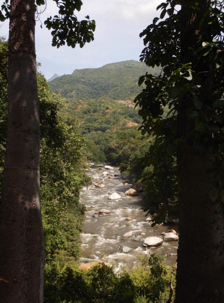 Bosque Seco Rio Sierra Nevada