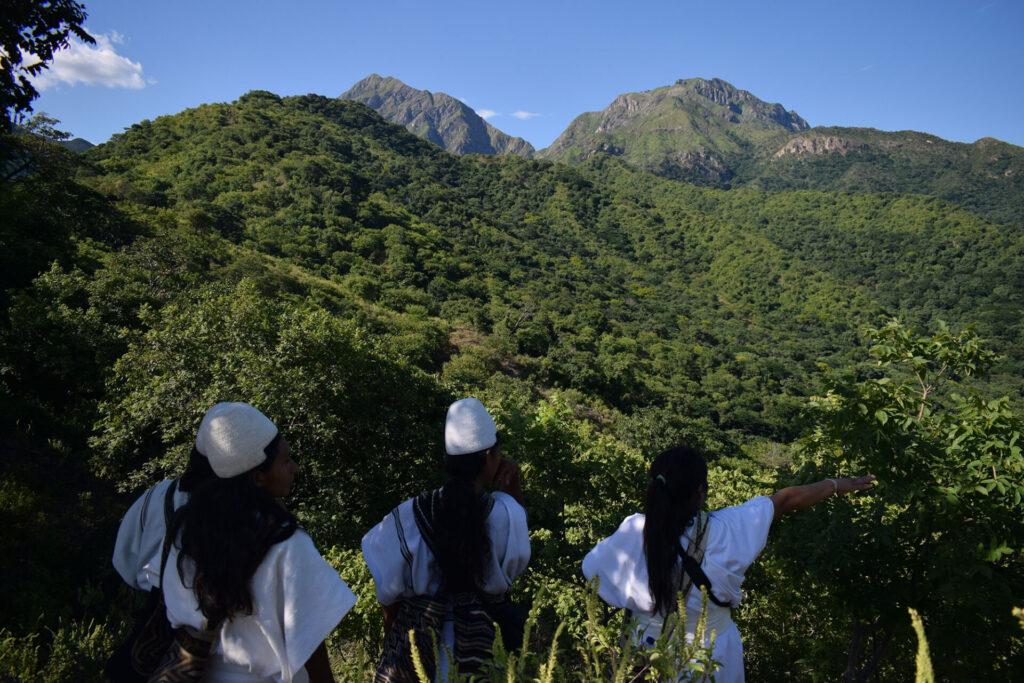Arhuacos - Conservación